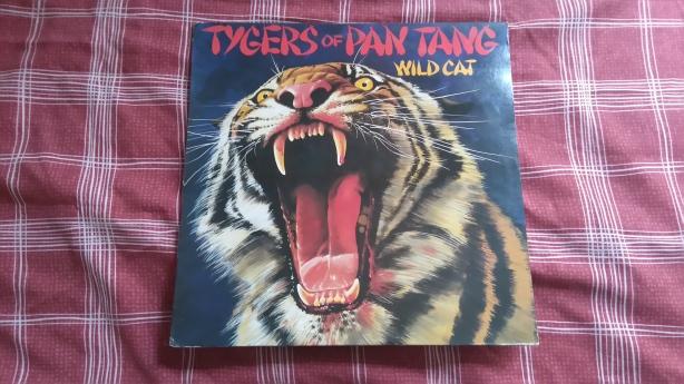 Tygers Vinyl.JPG